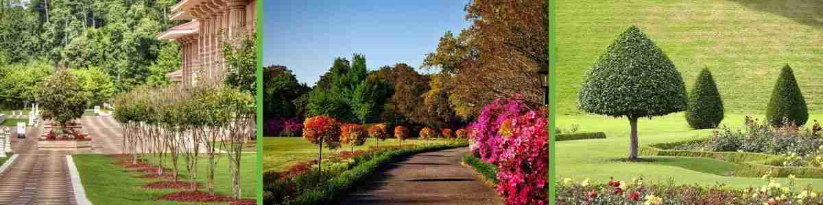 Commercial grounds maintenance services in Surrey